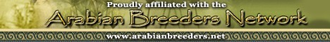 Arabian Breeders Network
